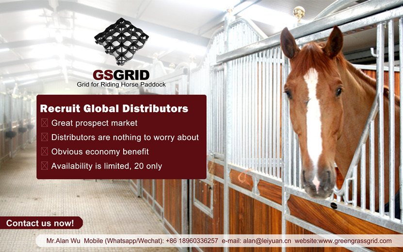 Recruit Global Distributors of Equestrian Performance Ground Grids