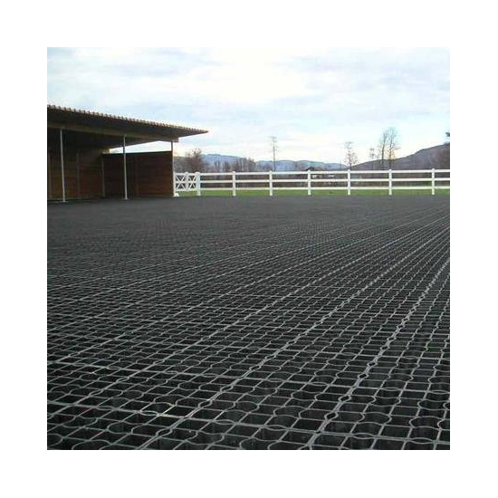 Buy Interlocking Soil Stabilizers Grid Floors Horse Riding