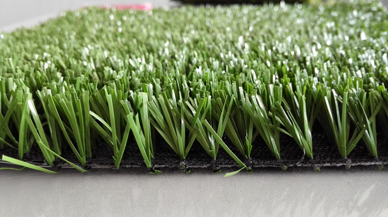 Comparison Between Artificial Grass and Natural Grass